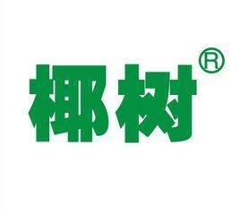 椰树集团有限公司宣讲会